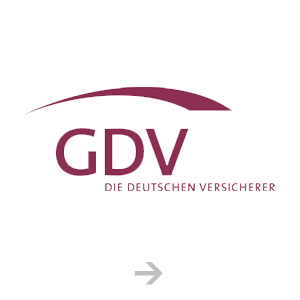 German Insurance Association (GDV)